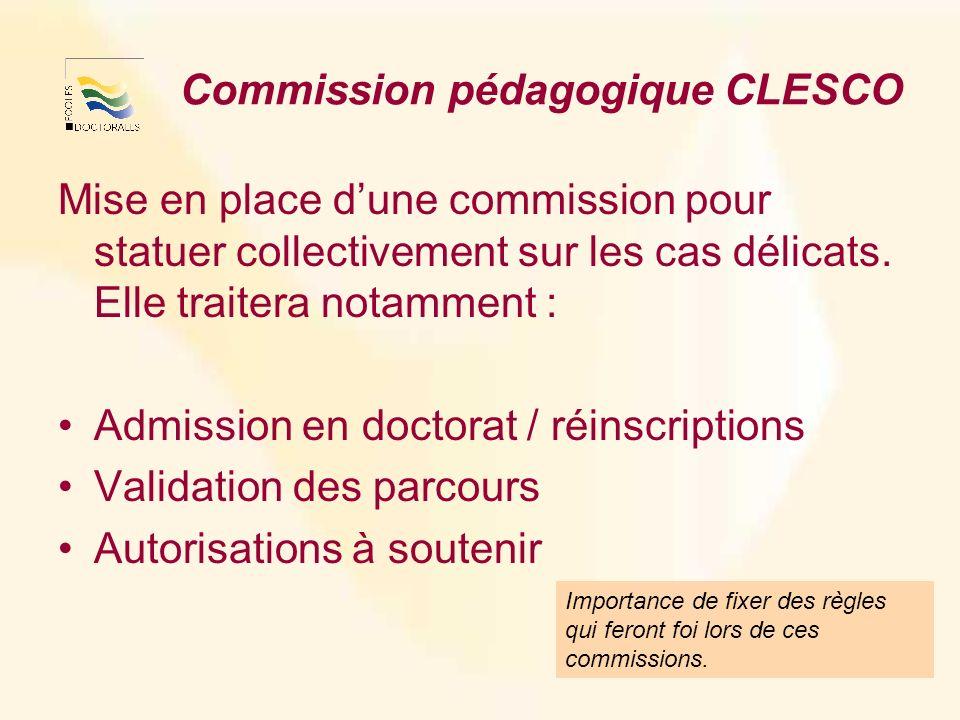 Commission pédagogique CLESCO Mise en place dune commission pour statuer collectivement sur les cas délicats.