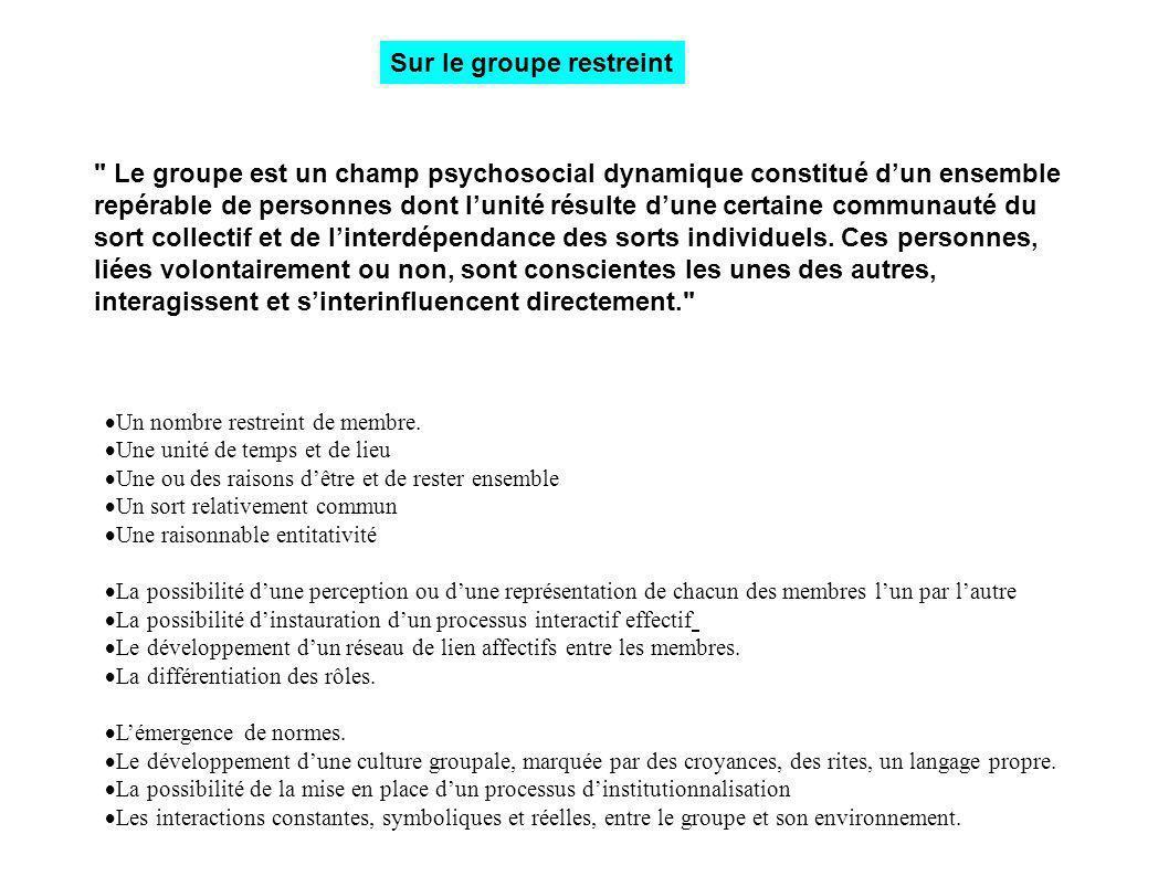 L articulation entre les représentations, l implication et le groupe dans le cadre de la formation des animateurs à l université Les représentations (sociales et professionnelles) sont élaborées et transformées en groupe et déterminées en partie par l implication.