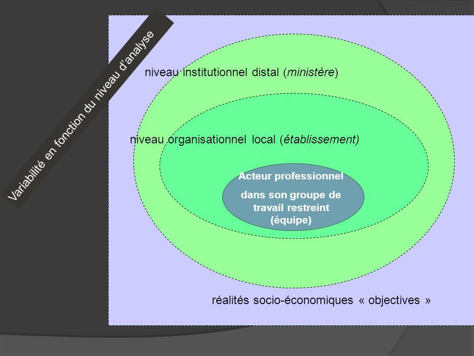 Acteur professionnel dans son groupe de travail restreint (équipe) niveau organisationnel local (établissement) niveau institutionnel distal (ministèr