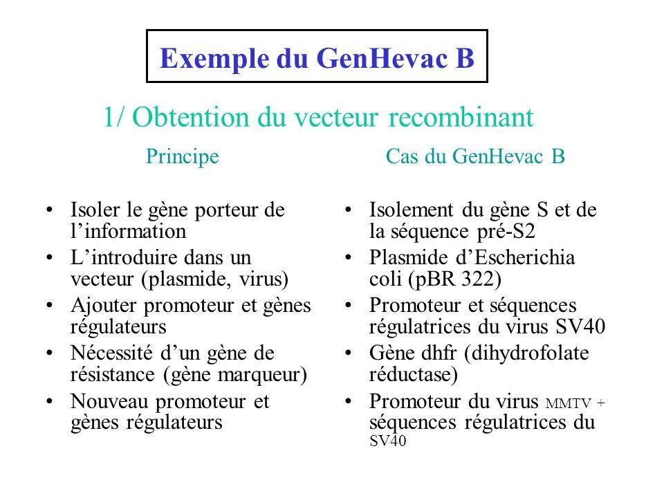 Principe Isoler le gène porteur de linformation Lintroduire dans un vecteur (plasmide, virus) Ajouter promoteur et gènes régulateurs Nécessité dun gèn