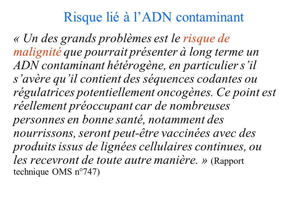 Risque lié à lADN contaminant « Un des grands problèmes est le risque de malignité que pourrait présenter à long terme un ADN contaminant hétérogène, en particulier sil savère quil contient des séquences codantes ou régulatrices potentiellement oncogènes.