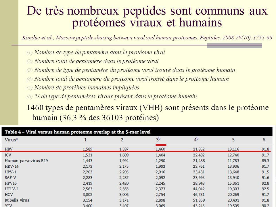 De très nombreux peptides sont communs aux protéomes viraux et humains Kanduc et al., Massive peptide sharing between viral and human proteomes. Pepti