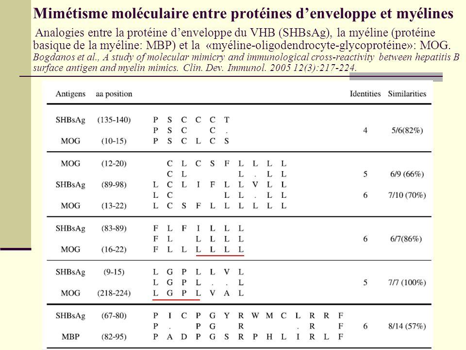 Mimétisme moléculaire entre protéines denveloppe et myélines Analogies entre la protéine denveloppe du VHB (SHBsAg), la myéline (protéine basique de l