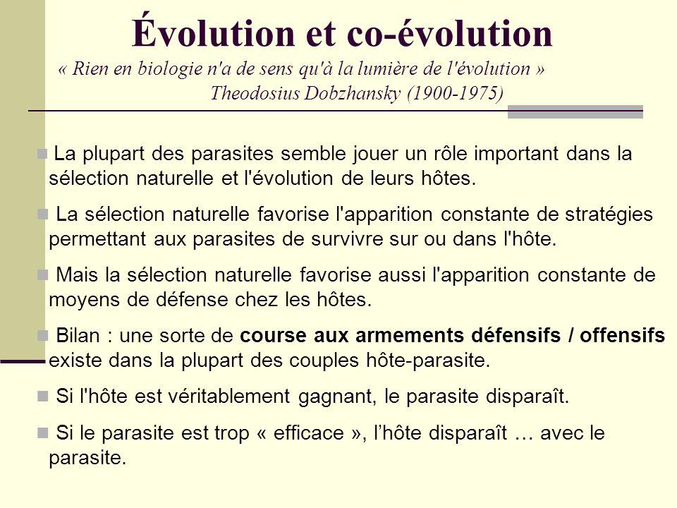 Évolution et co-évolution « Rien en biologie n'a de sens qu'à la lumière de l'évolution » Theodosius Dobzhansky (1900-1975) La plupart des parasites s