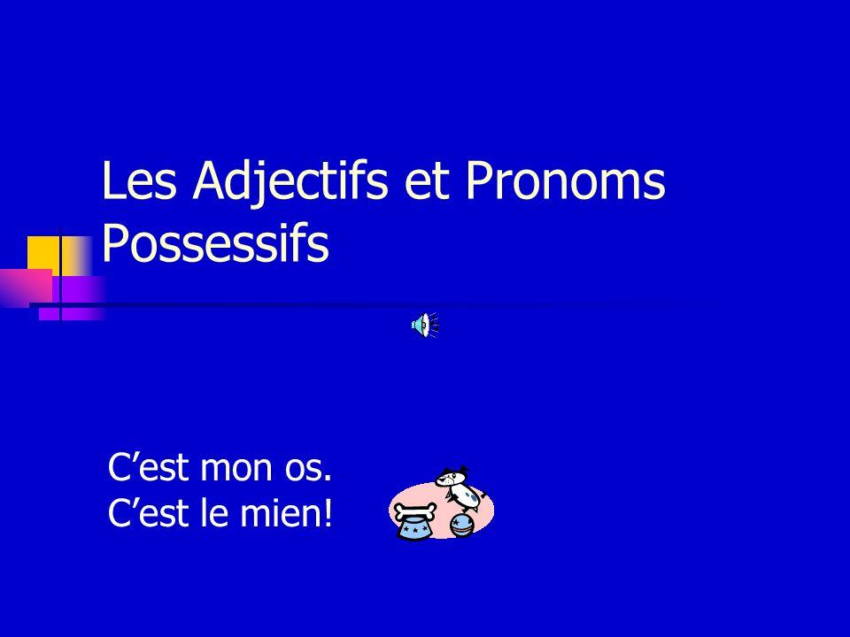 Les Adjectifs et Pronoms Possessifs Cest mon os. Cest le mien!