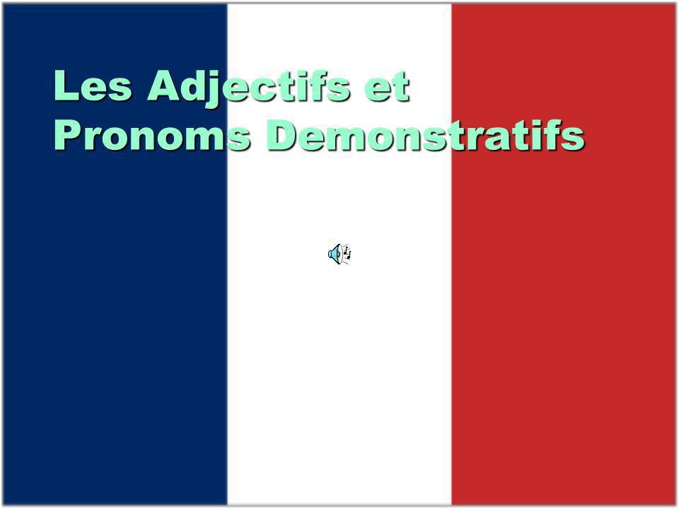 Les Adjectifs et Pronoms Demonstratifs
