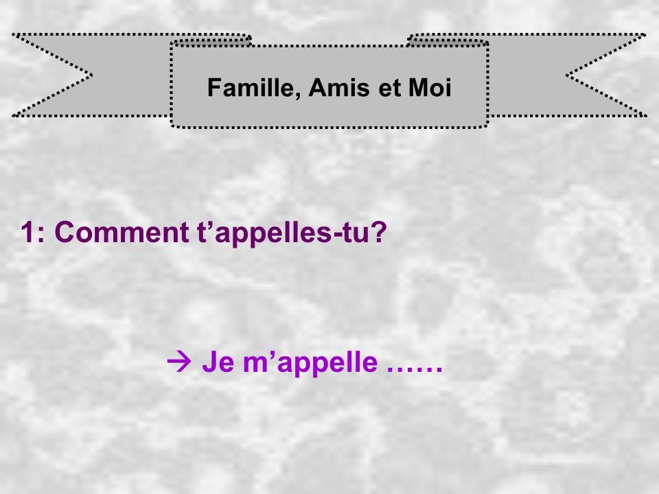 Famille, Amis et Moi 10: Tu tentends bien avec ta soeur (…).