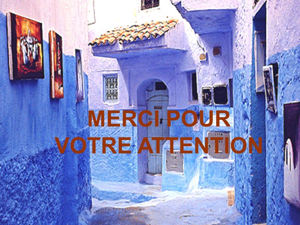 www.hcp.ma MERCI POUR VOTRE ATTENTION
