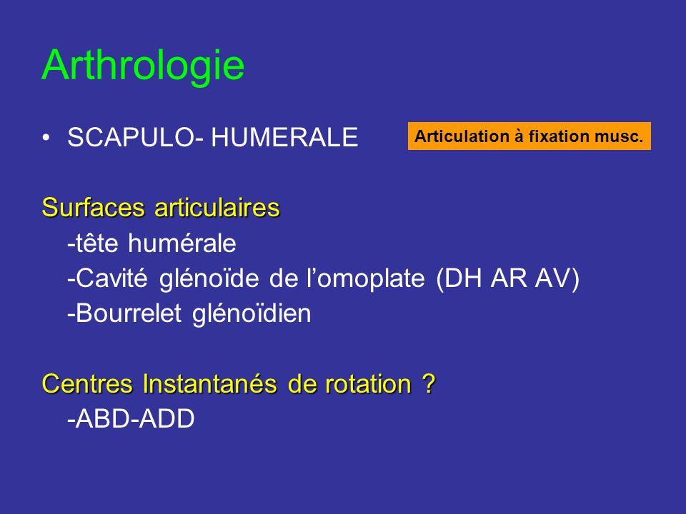 Arthrologie SCAPULO- HUMERALE Surfaces articulaires -tête humérale -Cavité glénoïde de lomoplate (DH AR AV) -Bourrelet glénoïdien Centres Instantanés