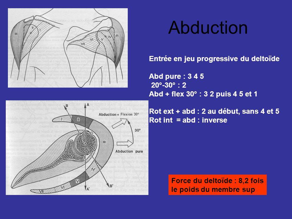 Abduction Entrée en jeu progressive du deltoïde Abd pure : 3 4 5 20°-30° : 2 Abd + flex 30° : 3 2 puis 4 5 et 1 Rot ext + abd : 2 au début, sans 4 et
