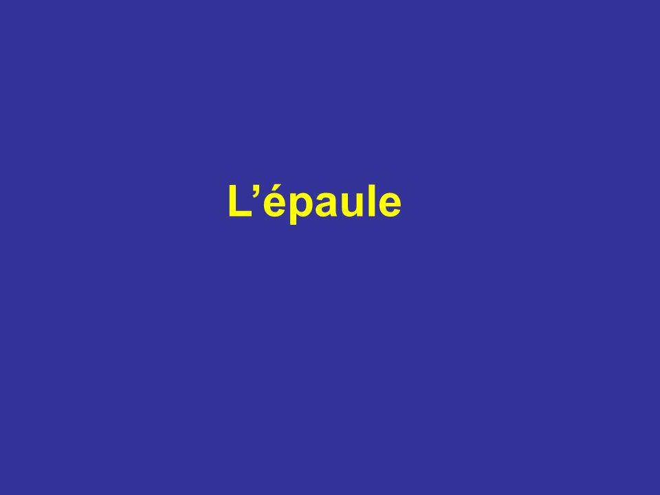 Ostéologie SCAPULA (Omoplate) Os plat et