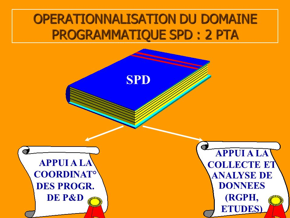 10 OPERATIONNALISATION DU DOMAINE PROGRAMMATIQUE SPD : 2 PTA APPUI A LA COORDINAT° DES PROGR. DE P&D SPD APPUI A LA COLLECTE ET ANALYSE DE DONNEES (RG