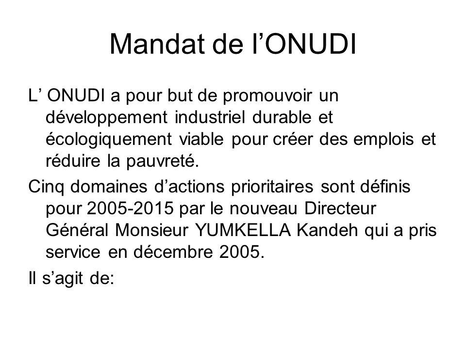Mandat de lONUDI L ONUDI a pour but de promouvoir un développement industriel durable et écologiquement viable pour créer des emplois et réduire la pauvreté.