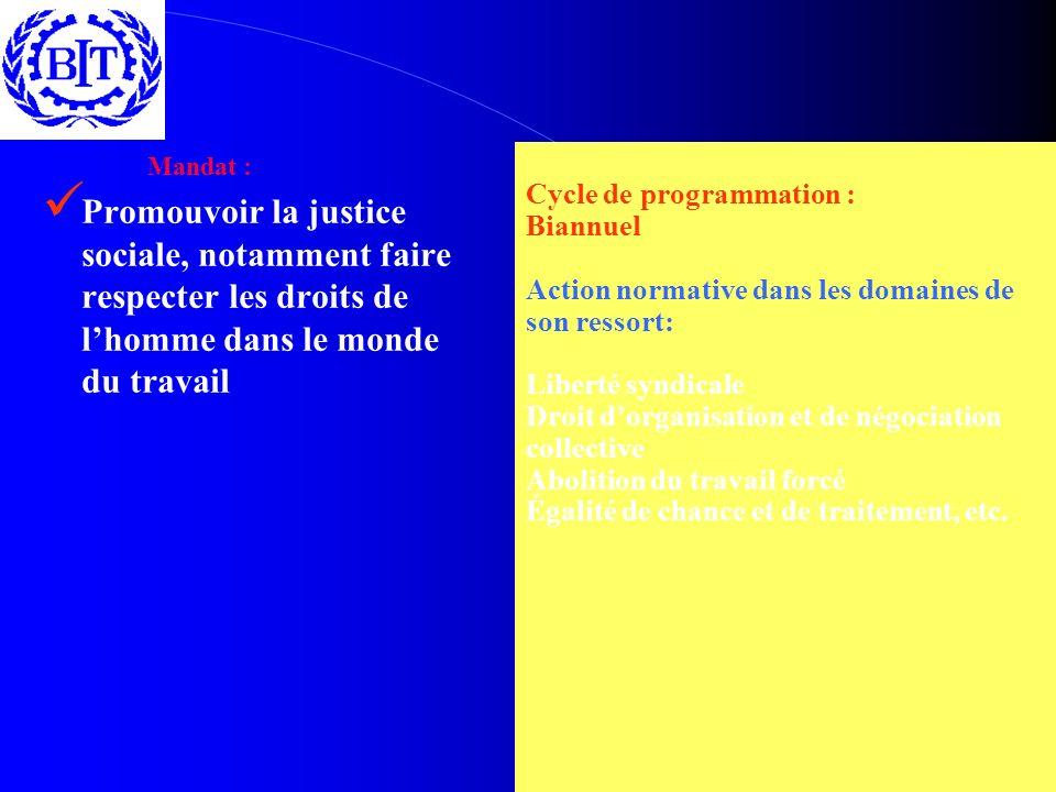 Mandat : Promouvoir la justice sociale, notamment faire respecter les droits de lhomme dans le monde du travail Cycle de programmation : Biannuel Acti