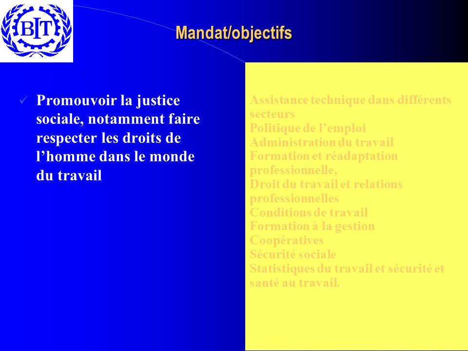 Mandat/objectifs Assistance technique dans différents secteurs Politique de lemploi Administration du travail Formation et réadaptation professionnell