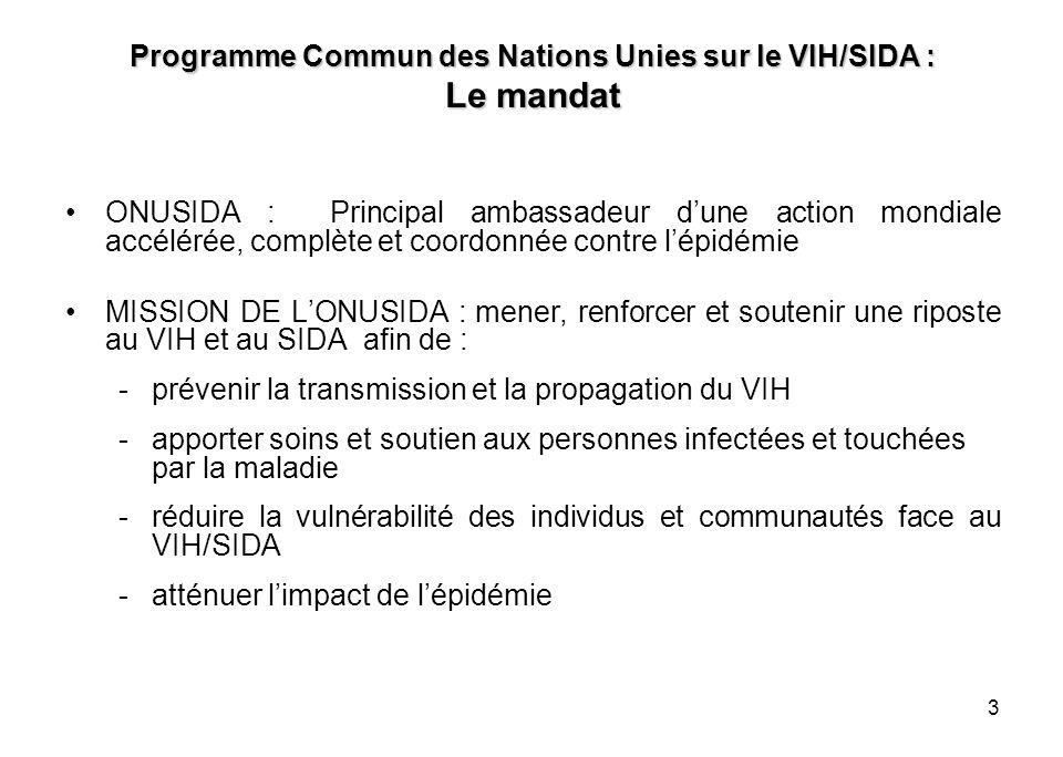 4 Programme Commun des Nations Unies sur le VIH/SIDA : Le fonctionnement -Le Coordonnateur Résident des Nations Unies représente lONUSIDA dans le pays -Laction de lONUSIDA dans le pays : menée par le Groupe Thématique des Nations Unies sur le VIH/SIDA sous le leadership du Président de ce groupe -Le Coordonnateur Pays ONUSIDA a une fonction de « Conseil et de facilitation» : auprès du Coordonnateur Résident des Agences du Système des Nations Unies, du Gouvernement, des ONG et du Secteur Privé -LONUSIDA na pas une mission dexécution