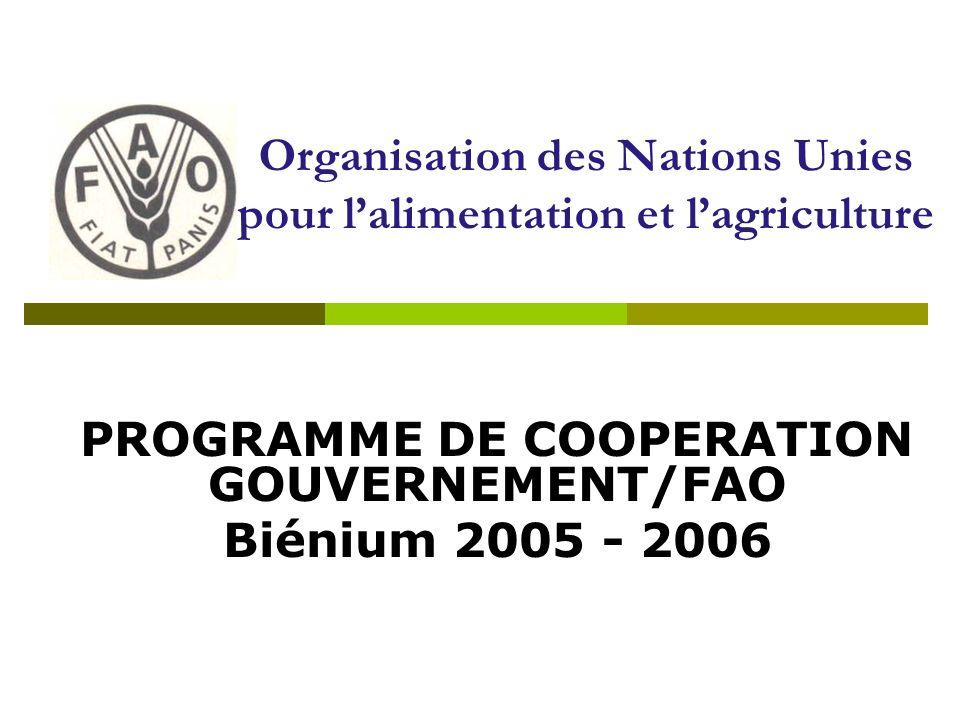 PROGRAMME DE COOPERATION GOUVERNEMENT/FAO Biénium 2005 - 2006 Organisation des Nations Unies pour lalimentation et lagriculture