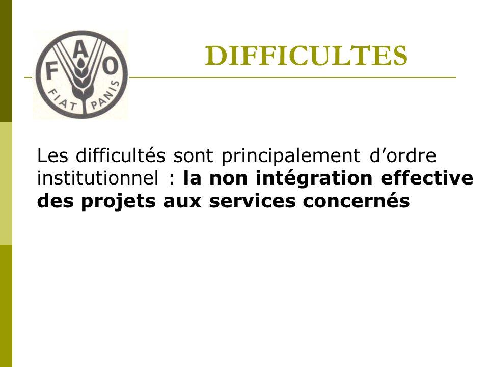 DIFFICULTES Les difficultés sont principalement dordre institutionnel : la non intégration effective des projets aux services concernés