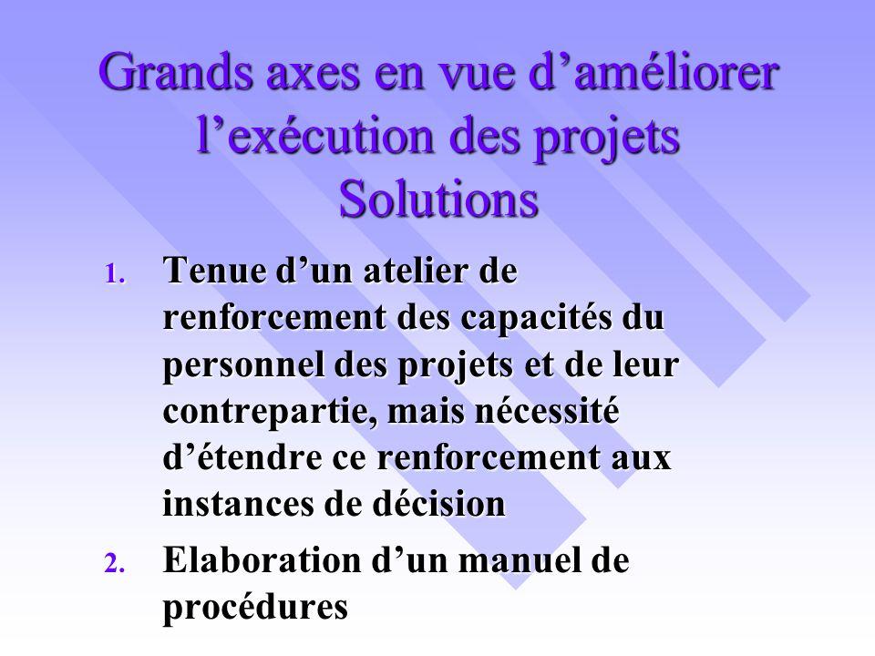 Grands axes en vue daméliorer lexécution des projets Solutions 1.
