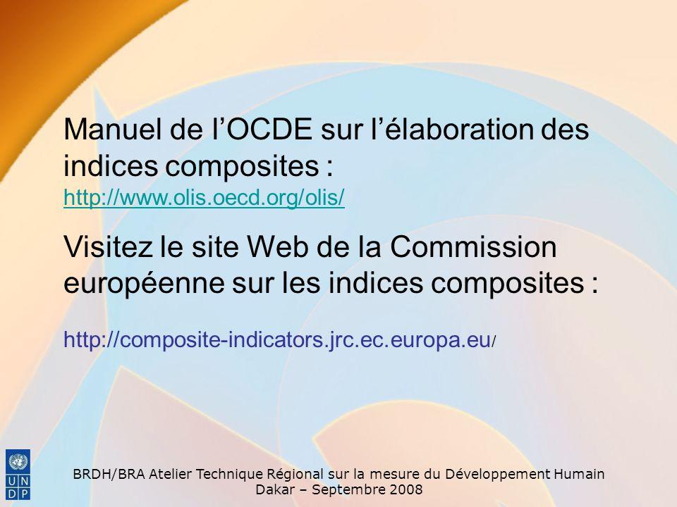 BRDH/BRA Atelier Technique Régional sur la mesure du Développement Humain Dakar – Septembre 2008 Manuel de lOCDE sur lélaboration des indices composit