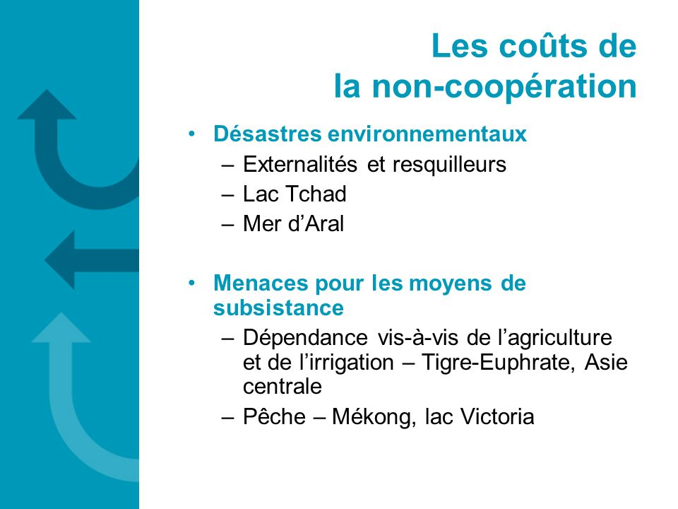 Les coûts de la non-coopération Désastres environnementaux –Externalités et resquilleurs –Lac Tchad –Mer dAral Menaces pour les moyens de subsistance
