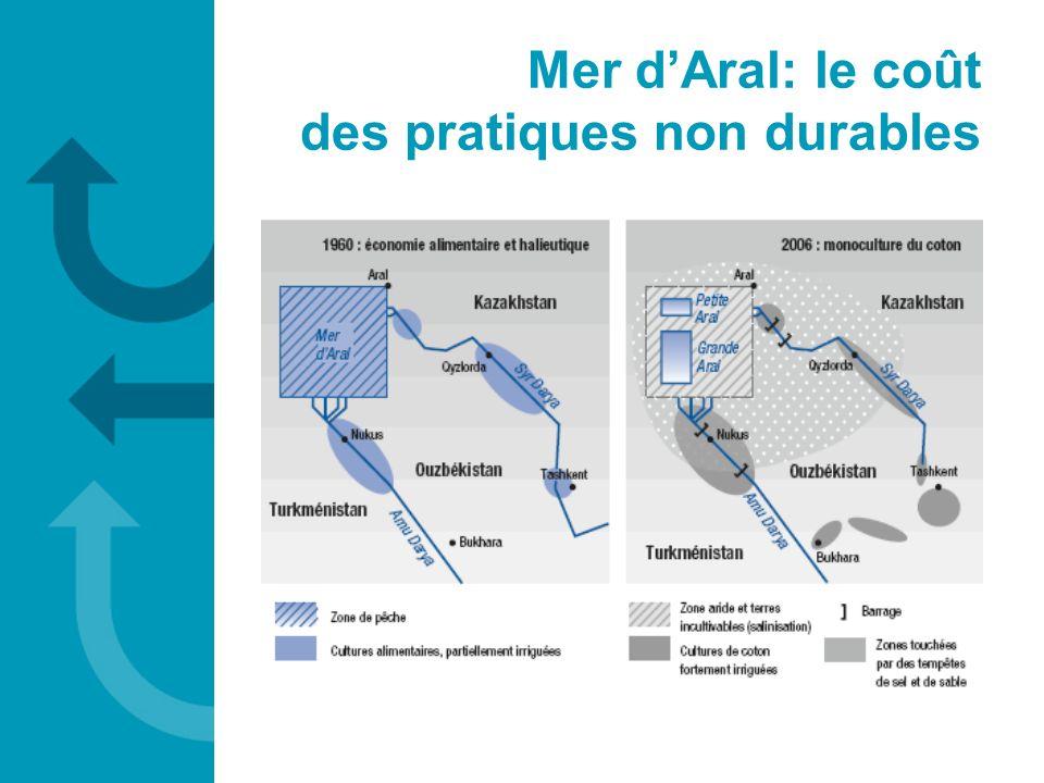 Mer dAral: le coût des pratiques non durables