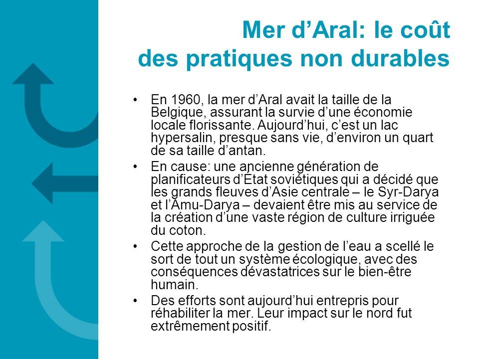 En 1960, la mer dAral avait la taille de la Belgique, assurant la survie dune économie locale florissante. Aujourdhui, cest un lac hypersalin, presque