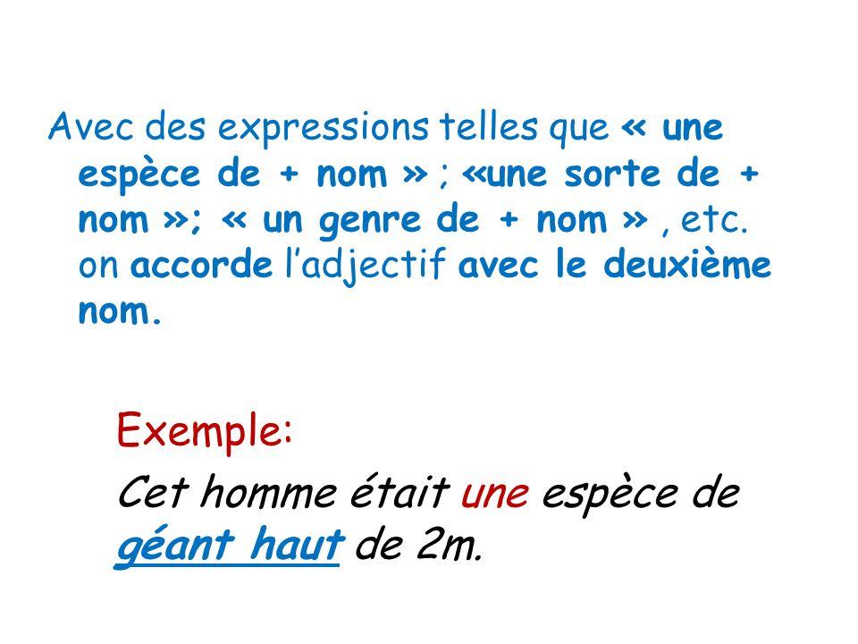 Avec des expressions telles que « une espèce de + nom » ; «une sorte de + nom »; « un genre de + nom », etc. on accorde ladjectif avec le deuxième nom