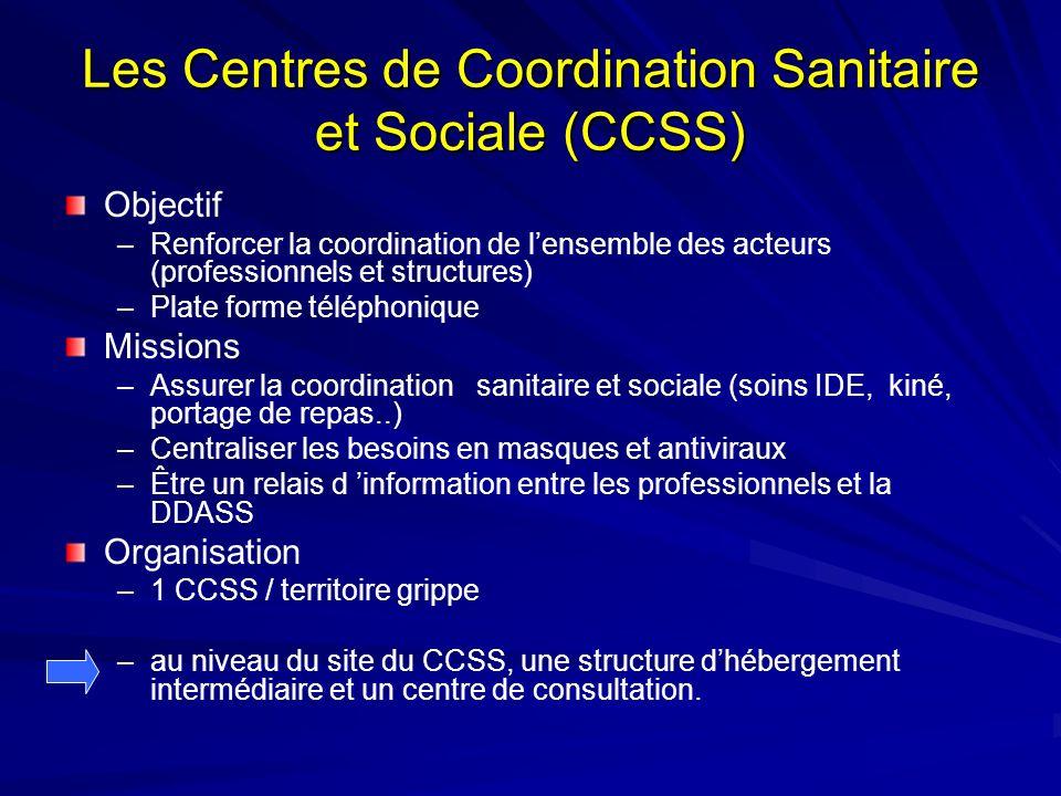 Les Centres de Coordination Sanitaire et Sociale (CCSS) Objectif –Renforcer la coordination de lensemble des acteurs (professionnels et structures) –P