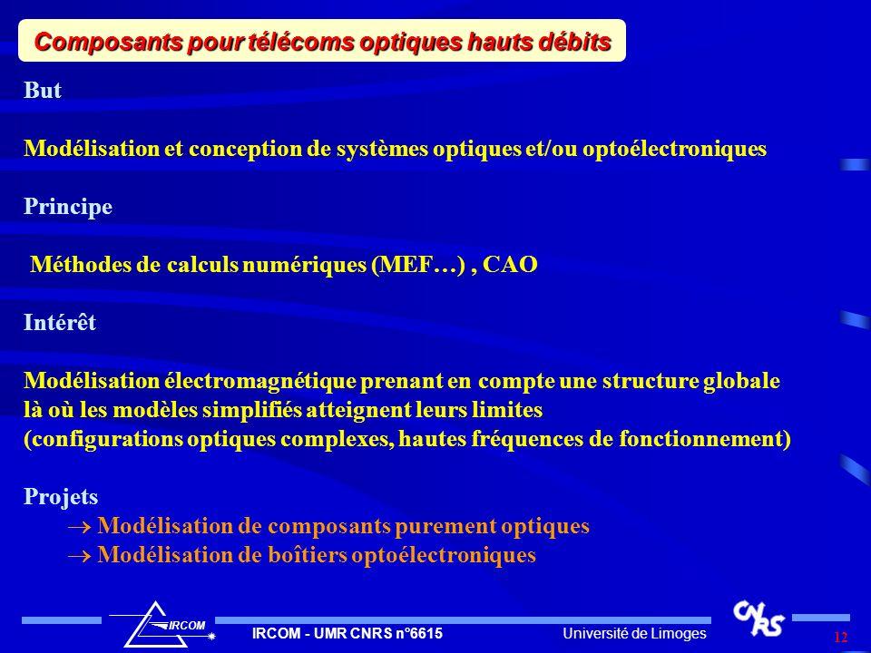 Université de LimogesIRCOM - UMR CNRS n°6615 IRCOM 12 Composants pour télécoms optiques hauts débits But Modélisation et conception de systèmes optiqu