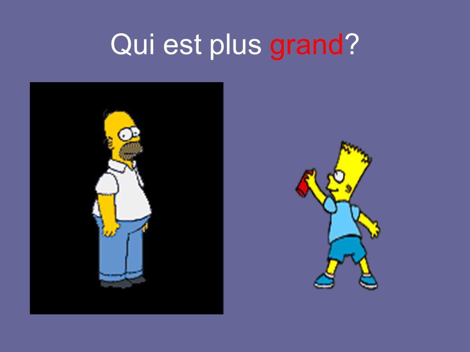 Voici Abraham Il a soixante-dix ans. Il est le père de Homer. Il est le grand-père de Bart, Lisa et Maggie. Il est vieux.