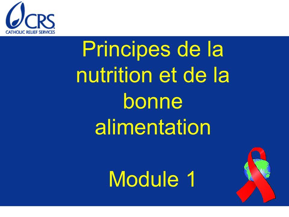 Groupe d aliments N° 3 : Légumes Riches en nutriments essentiels (vitamines et minéraux) Composés principalement d eau Exemples : –Légumes verts –Potiron et courge –Carotte –Chou