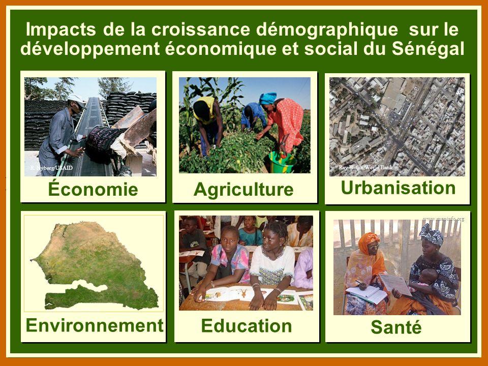 B. Niang/BASICS/USAID Impacts de la croissance démographique sur le développement économique et social du Sénégal AgricultureÉconomie Santé Education