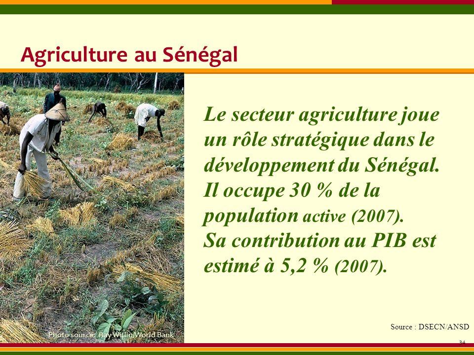 Agriculture au Sénégal 34 Le secteur agriculture joue un rôle stratégique dans le développement du Sénégal. Il occupe 30 % de la population active (20