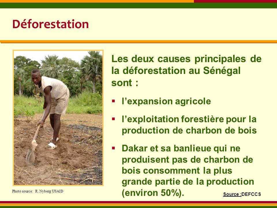 Déforestation Les deux causes principales de la déforestation au Sénégal sont : lexpansion agricole lexploitation forestière pour la production de cha