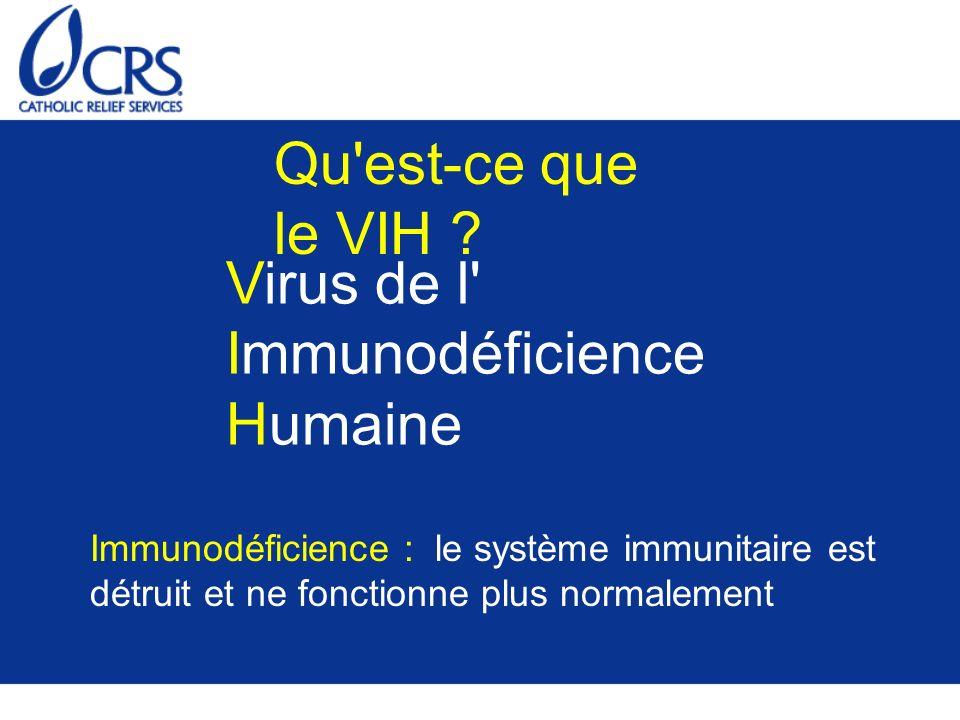 Qu'est-ce que le VIH ? Virus de l' Immunodéficience Humaine Immunodéficience : le système immunitaire est détruit et ne fonctionne plus normalement