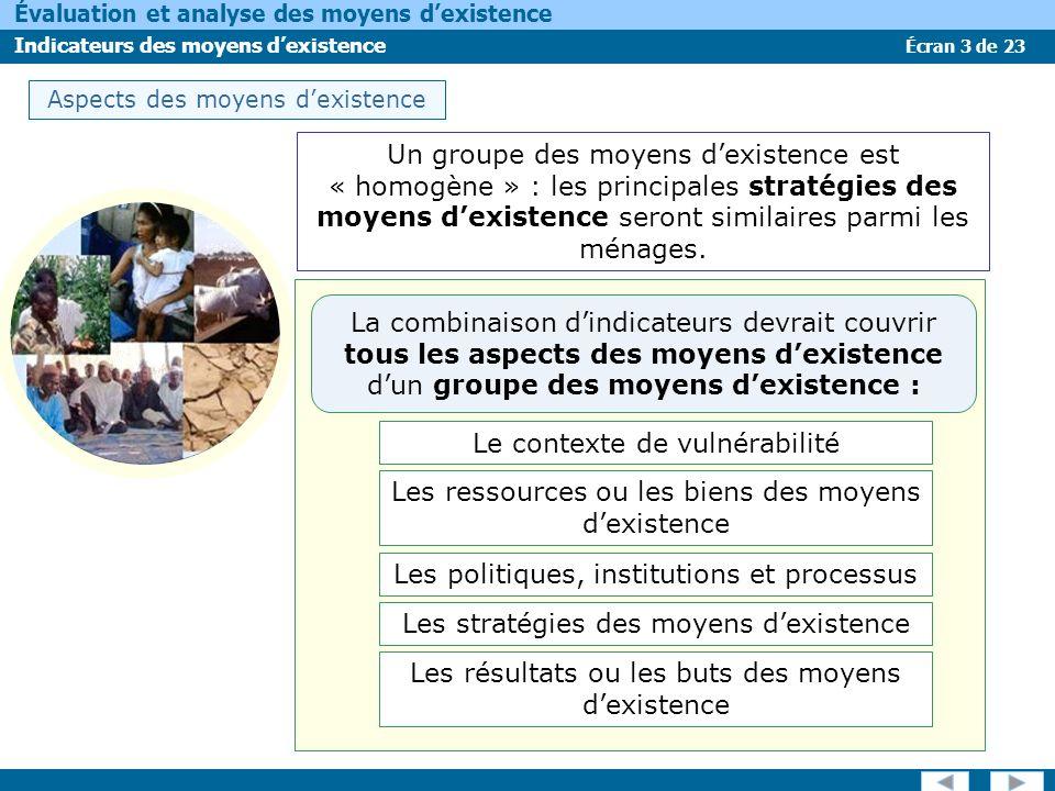 Écran 3 de 23 Évaluation et analyse des moyens dexistence Indicateurs des moyens dexistence Aspects des moyens dexistence Un groupe des moyens dexiste