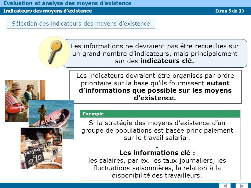 Écran 5 de 23 Évaluation et analyse des moyens dexistence Indicateurs des moyens dexistence Les indicateurs devraient être organisés par ordre priorit