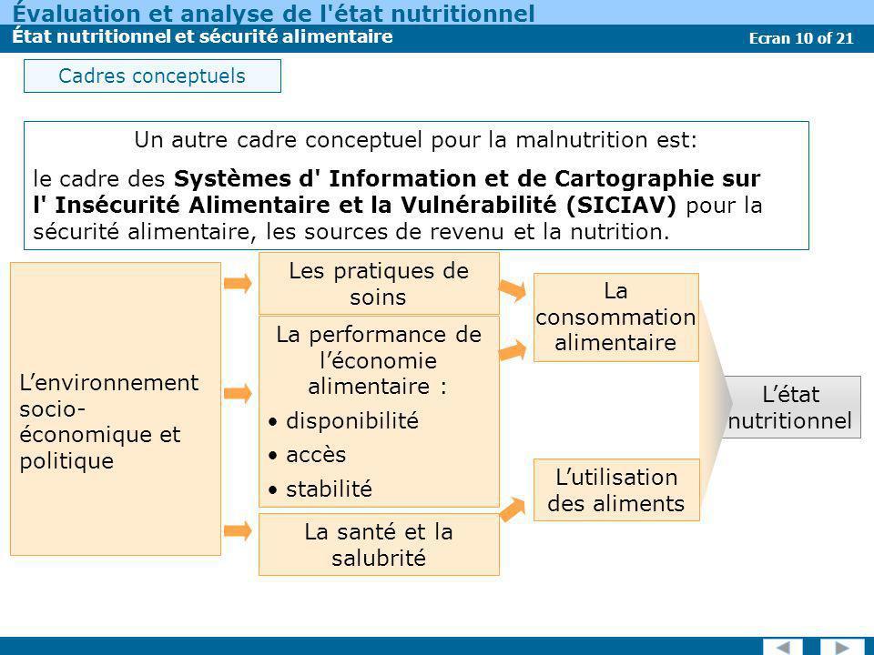 Évaluation et analyse de l'état nutritionnel État nutritionnel et sécurité alimentaire Ecran 10 of 21 Un autre cadre conceptuel pour la malnutrition e
