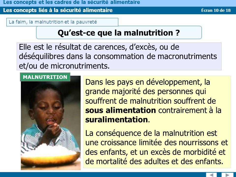 Écran 10 de 18 Les concepts et les cadres de la sécurité alimentaire Les concepts liés à la sécurité alimentaire MALNUTRITION Elle est le résultat de carences, dexcès, ou de déséquilibres dans la consommation de macronutriments et/ou de micronutriments.