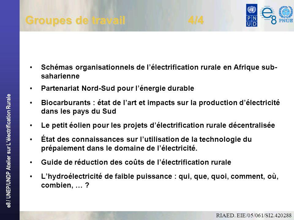 e8 / UNEP/UNDP Atelier sur L électrification Rurale Groupes de travail 4/4 Schémas organisationnels de lélectrification rurale en Afrique sub- saharienne Partenariat Nord-Sud pour lénergie durable Biocarburants : état de lart et impacts sur la production délectricité dans les pays du Sud Le petit éolien pour les projets délectrification rurale décentralisée État des connaissances sur lutilisation de la technologie du prépaiement dans le domaine de lélectricité.