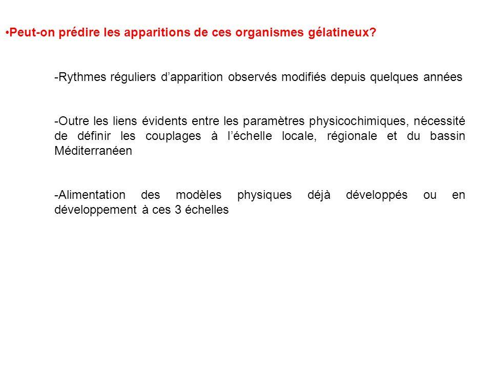LUtilisation des méduses/ des gélatineux: une alternative.