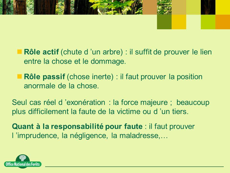 Rôle actif (chute d un arbre) : il suffit de prouver le lien entre la chose et le dommage.