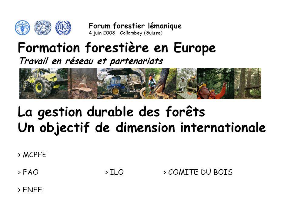 La gestion durable des forêts Un objectif de dimension internationale > MCPFE > FAO> ILO> COMITE DU BOIS > ENFE Formation forestière en Europe Travail en réseau et partenariats Forum forestier lémanique 4 juin 2008 – Collombey (Suisse)