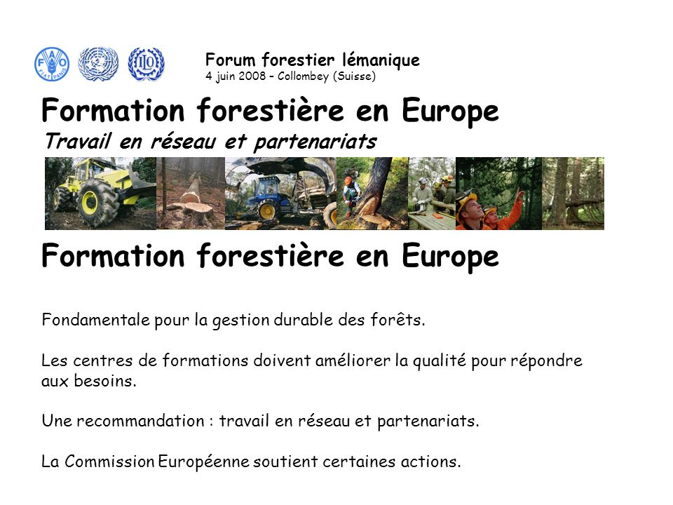 Centres de formation forestière en Europe Le portail de la formation et des réseaux : www.eduforest.eu 1 ère conférence internationale : France 2005 Programmes de travail avec des résultats concrets utilisables par tous.