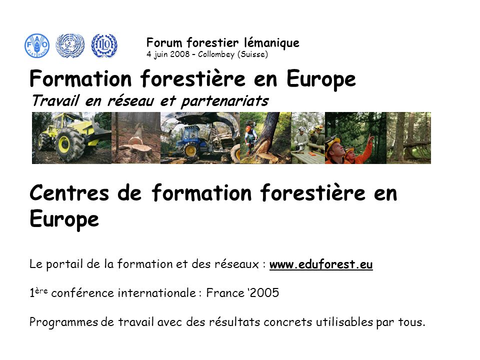 Le Réseau dExperts FAO/UNECE/BIT Contact: Christian SALVIGNOL Tel.