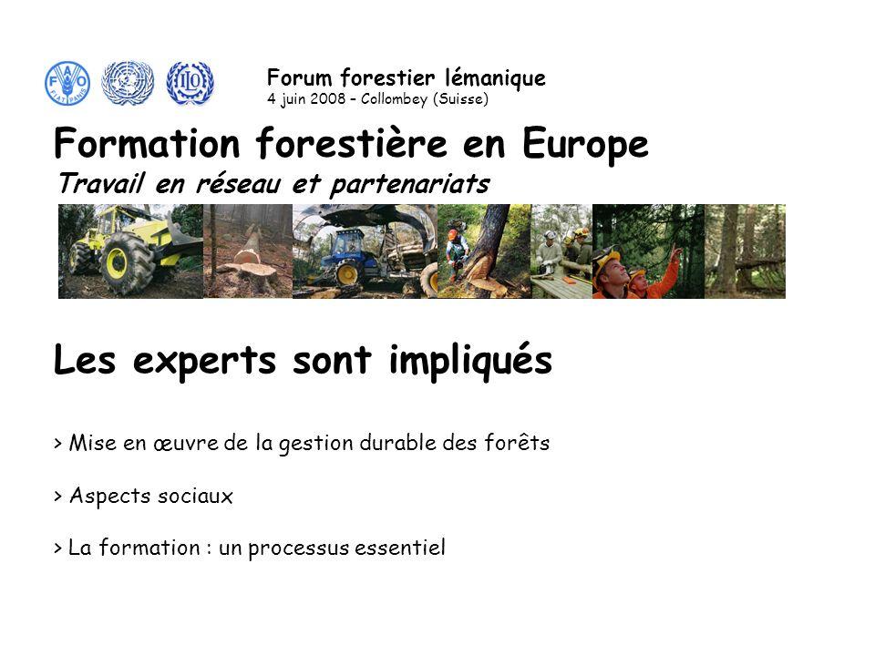 Les experts sont impliqués > Mise en œuvre de la gestion durable des forêts > Aspects sociaux > La formation : un processus essentiel Formation forestière en Europe Travail en réseau et partenariats Forum forestier lémanique 4 juin 2008 – Collombey (Suisse)