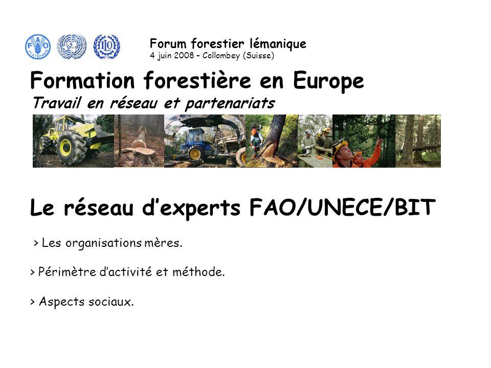 Les activités du réseau dexperts FAO/UNECE/BIT programme Leonardo en termes de valorisation bien identifiées.