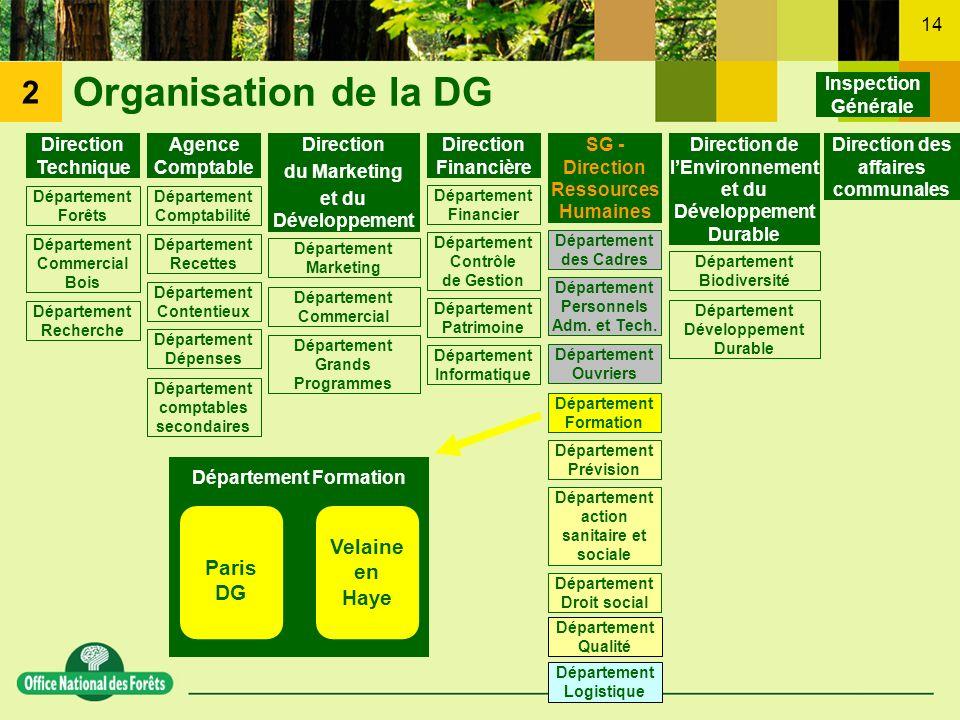 14 Organisation de la DG Inspection Générale SG - Direction Ressources Humaines Département des Cadres Département Personnels Adm. et Tech. Départemen