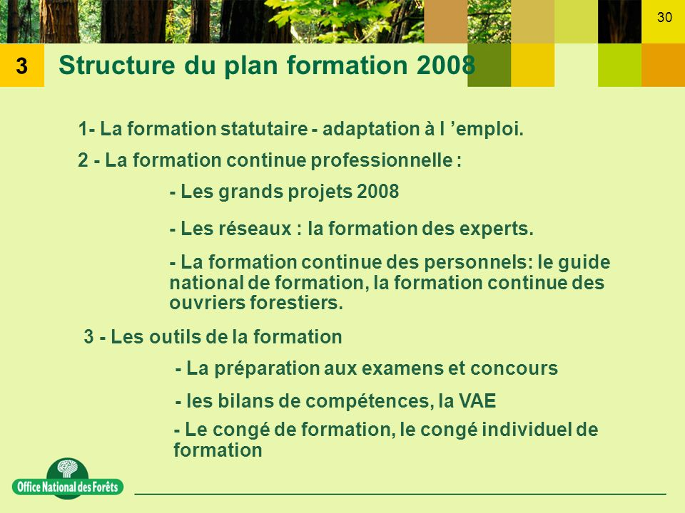 30 Structure du plan formation 2008 1- La formation statutaire - adaptation à l emploi. 2 - La formation continue professionnelle : - Les grands proje